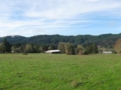 Surprising Walt Gayner Real Estate Roseburg Oregon Download Free Architecture Designs Xaembritishbridgeorg